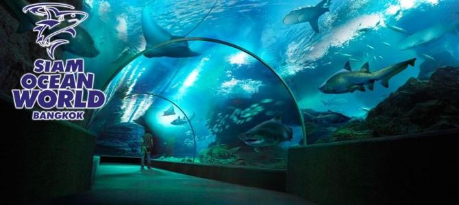 עולם המים סיאם – בנגקוק