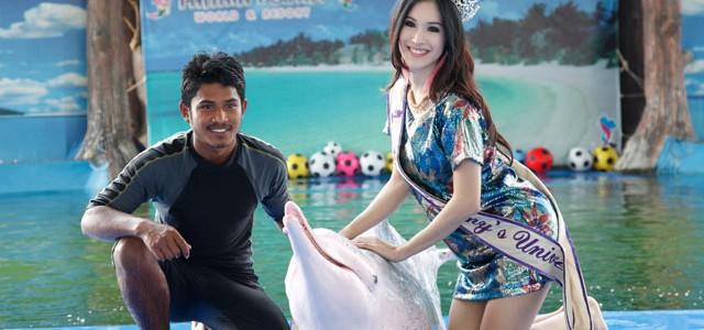 טיול יום לפאטייה ושחיה עם דולפינים